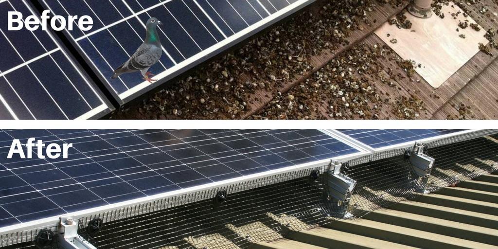 Solar Skirts 30m Kit Solar Panel Bird Mesh Kit Buy Online