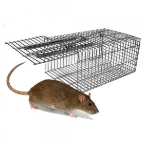 Humane Rat & Mouse Trap