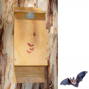 Bat Nesting Box Kit