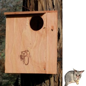 Possum Nesting Box Kit - Brushtail