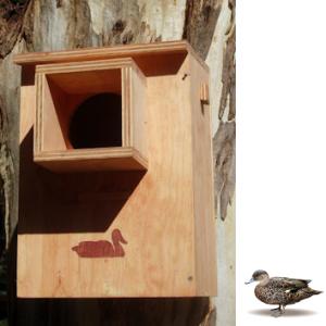 Duck Nesting Box