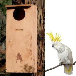 Parrot Nesting Box - Large