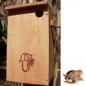 Sugar Glider Nesting Box Kit