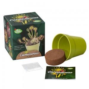 Carnivorous Plant Kit