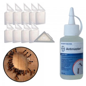 Black Ant Control Kit - Basic