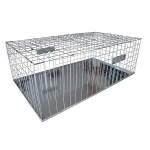 Buy Bird Traps Online From Sydney Australia