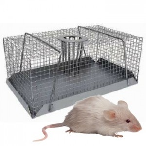 Multi Catch Mouse Trap Small