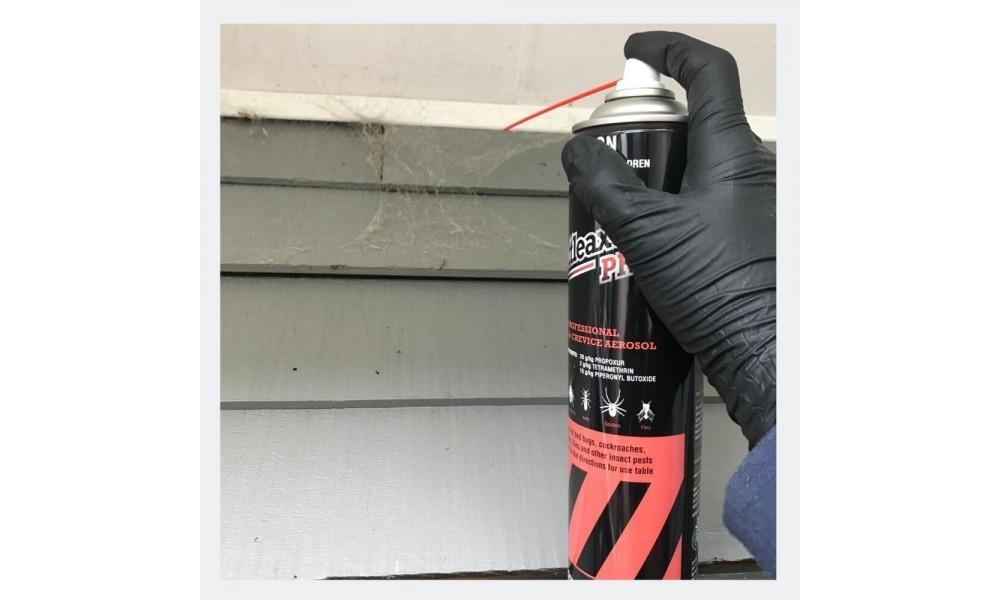 Battleaxe Pro Aerosol spraying spiders web