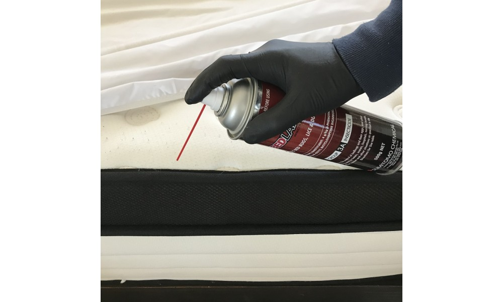 Bedlam Spraying Mattress