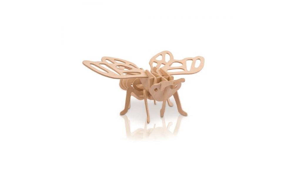 Cicada Model Kit