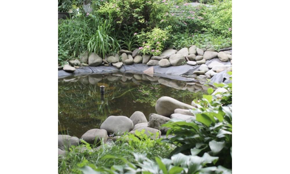 Envirosafe Mosquito Drops Garden Pond