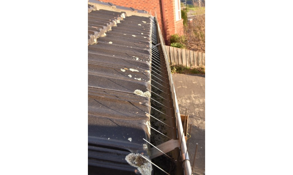 Gutter Bird Spikes