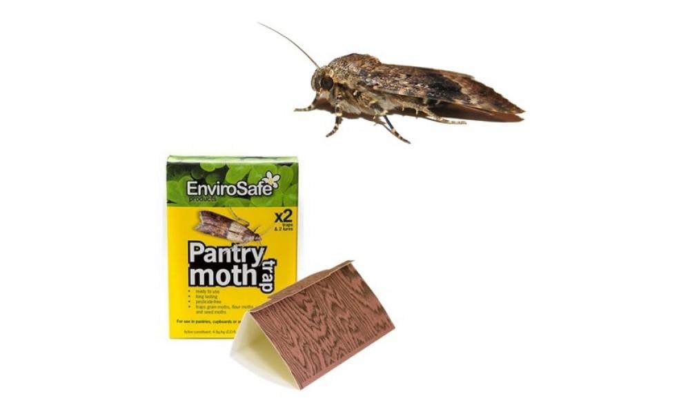 Envirosafe Pantry Moth Trap