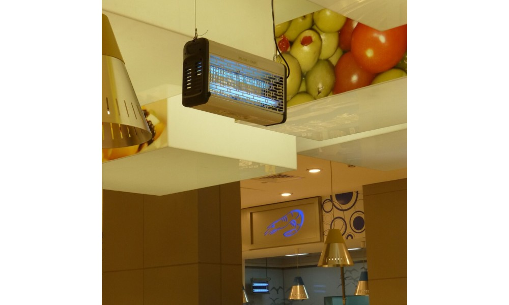 Plus Zap Ceiling Mounted in Kitchen