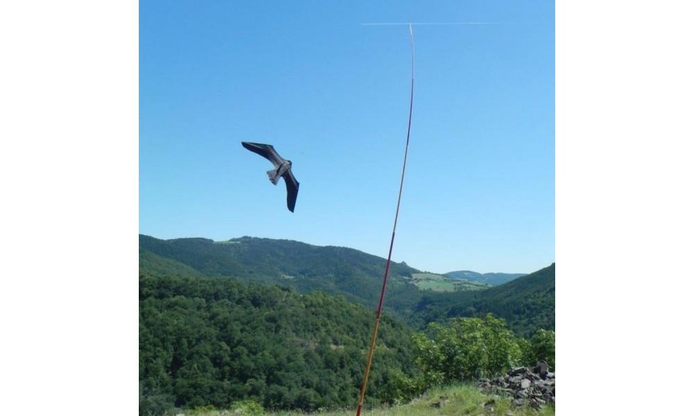 ScaryBird Kite In Use