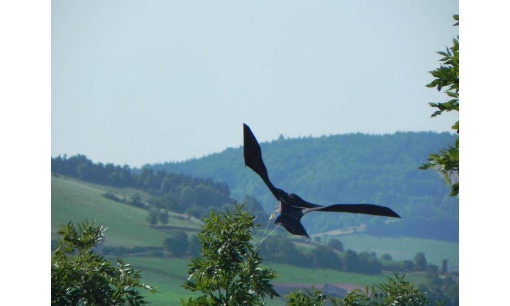 ScaryBird Kite