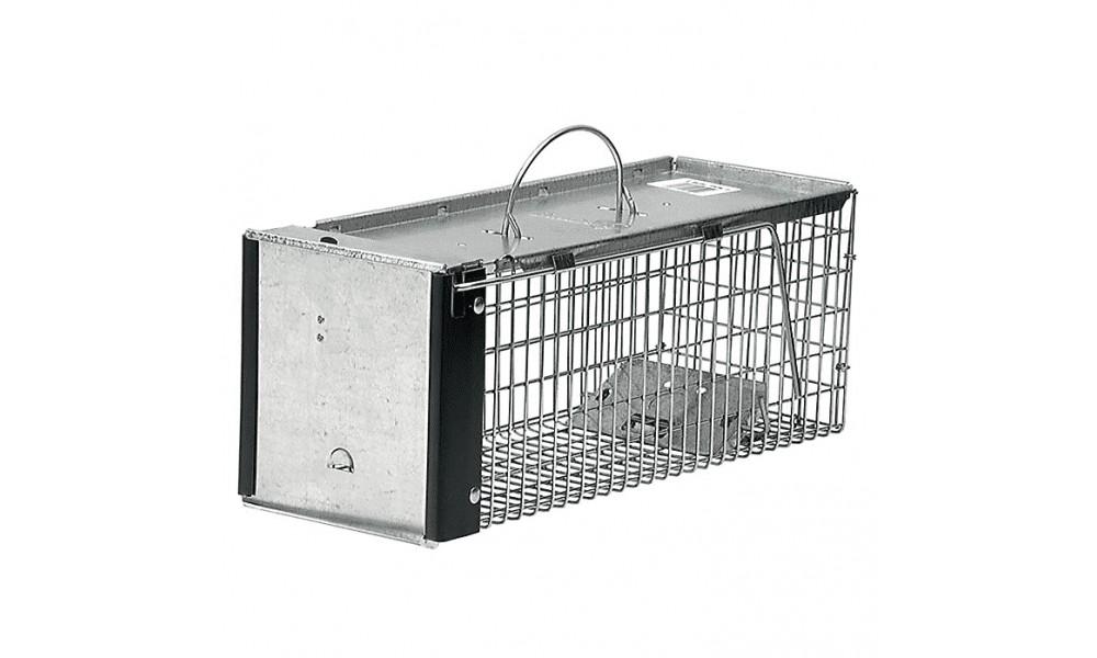 Single Catch Rat Trap
