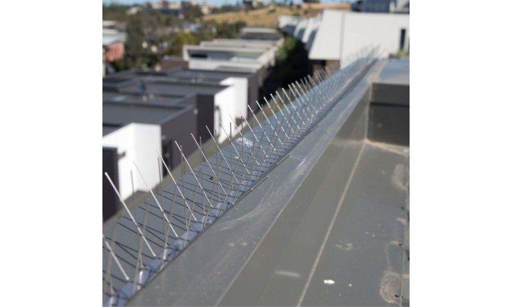 Stainless Steel Bird Spikes - Wide Installed