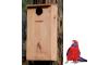 Parrot Nesting Box Kit - Medium