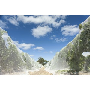 Bird Netting - Vineyard - WHITE