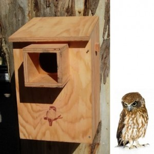 Owl Nesting Box Kit