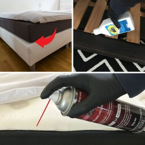 Bed Bug Control Kit - Basic Applications