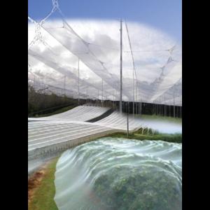 Bird Netting - Canopy - WHITE