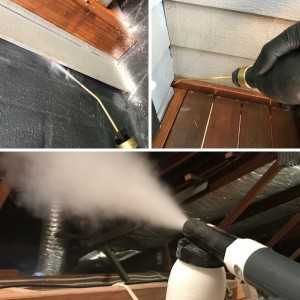 Coopex Insecticidal Dust