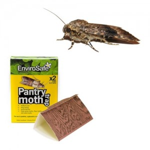 Envirosafe Pantry Moth Trap