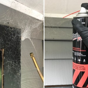 Spider Control Kit Application