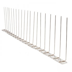 Stainless Steel Bird Spikes - Single Row