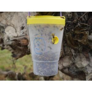 VesPEX PRO European Wasp Dominator Bottle Trap