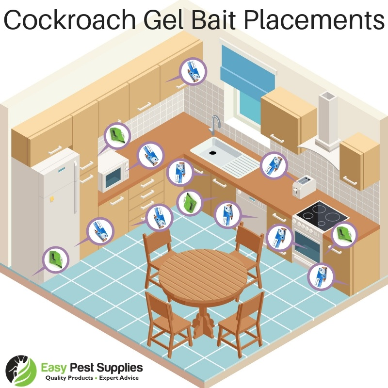 Cockroach Gel Placement