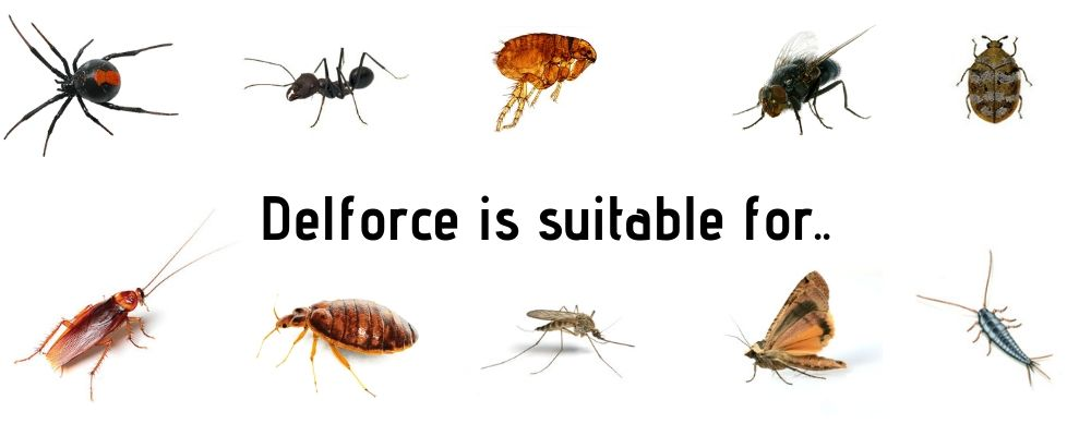 Delforce is suitable for