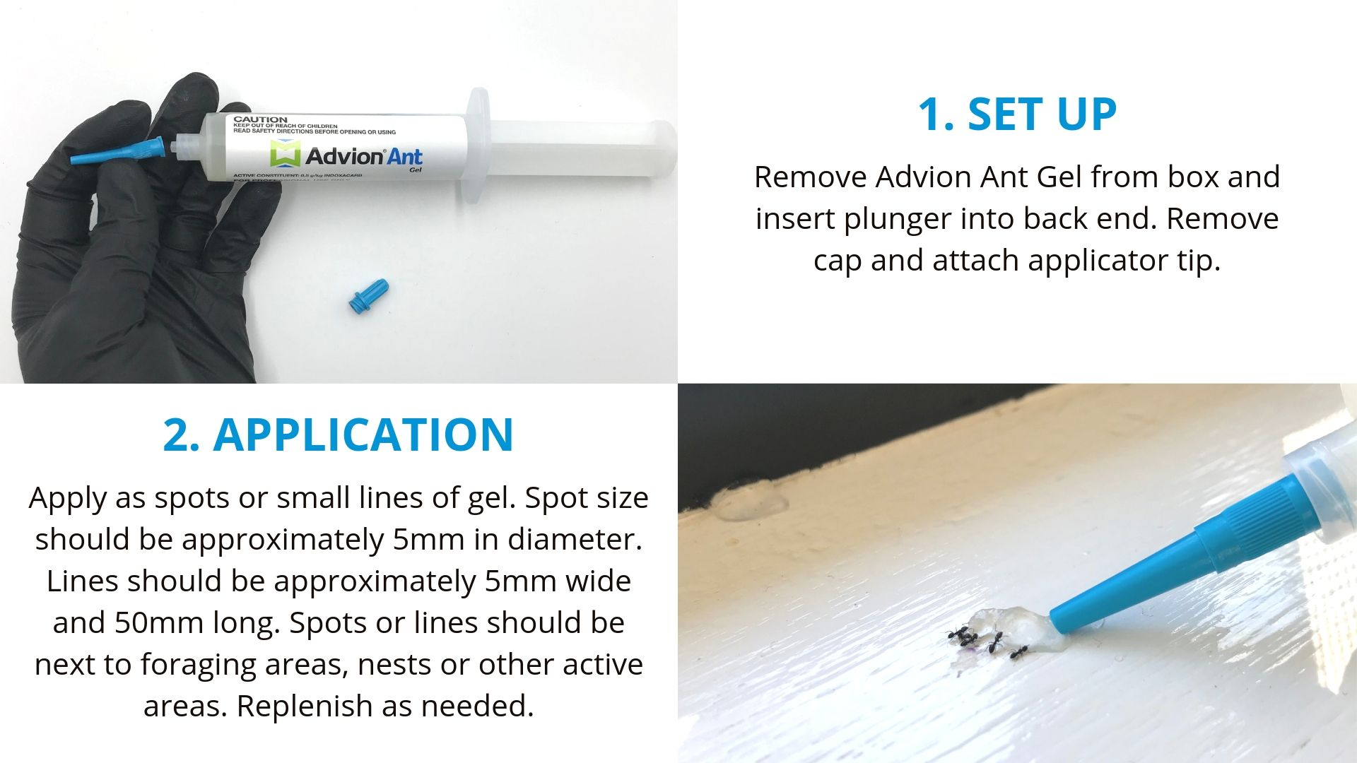 How to use Advion Ant Gel