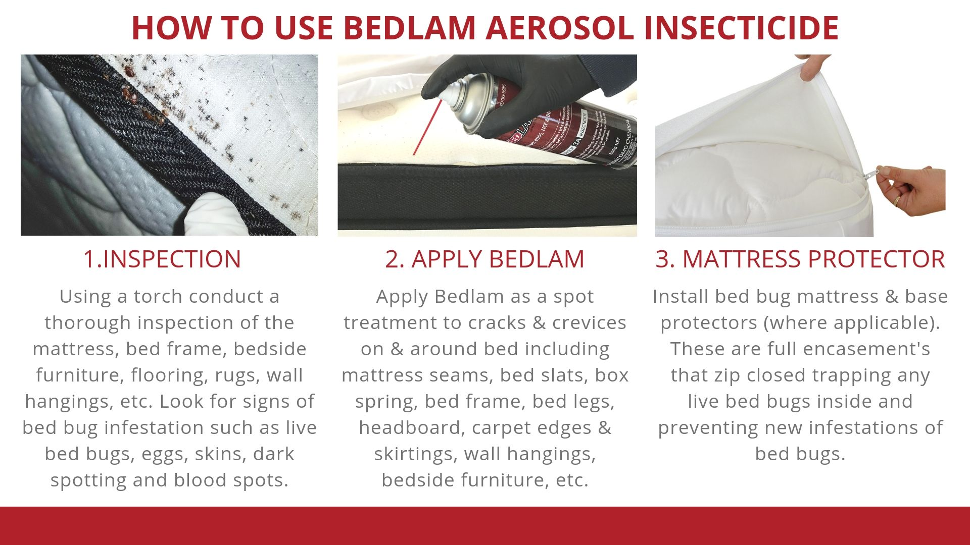 How to use Bedlam Aerosol Insecticide