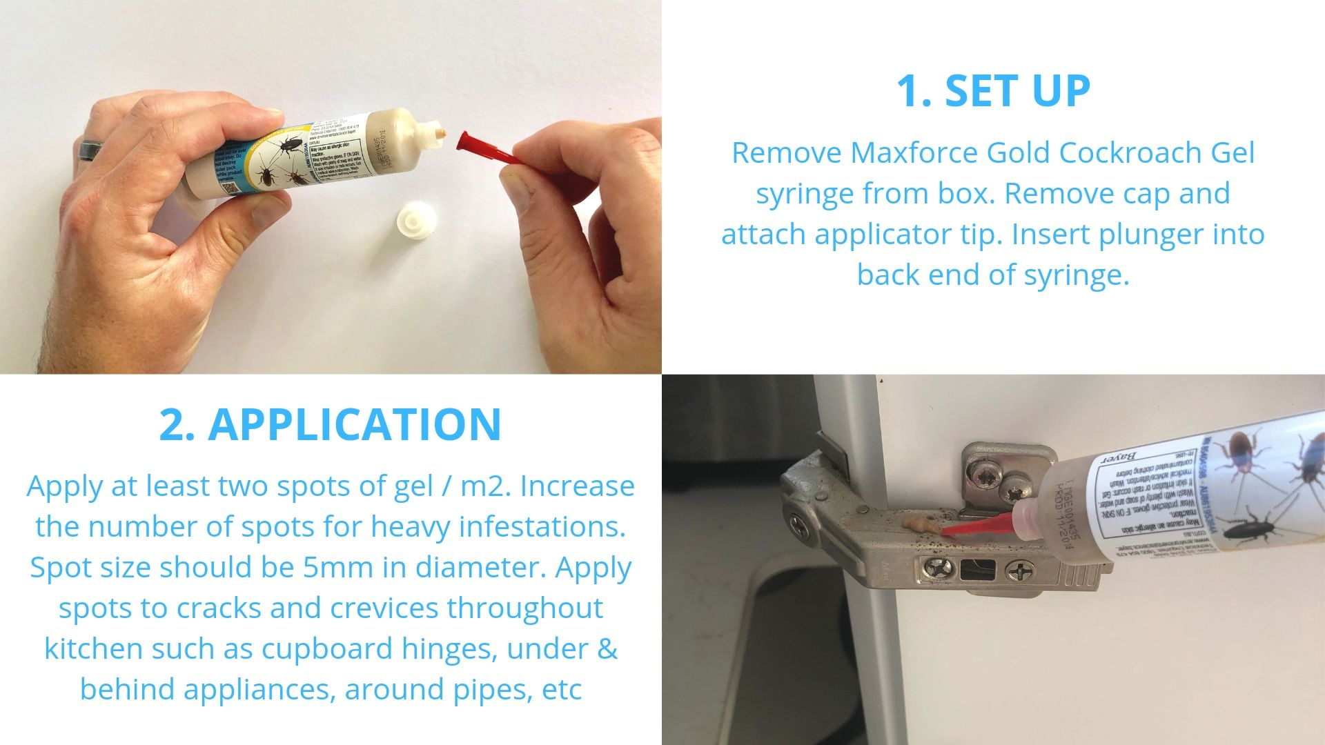 How to use Maxforce Gold Cockroach Gel
