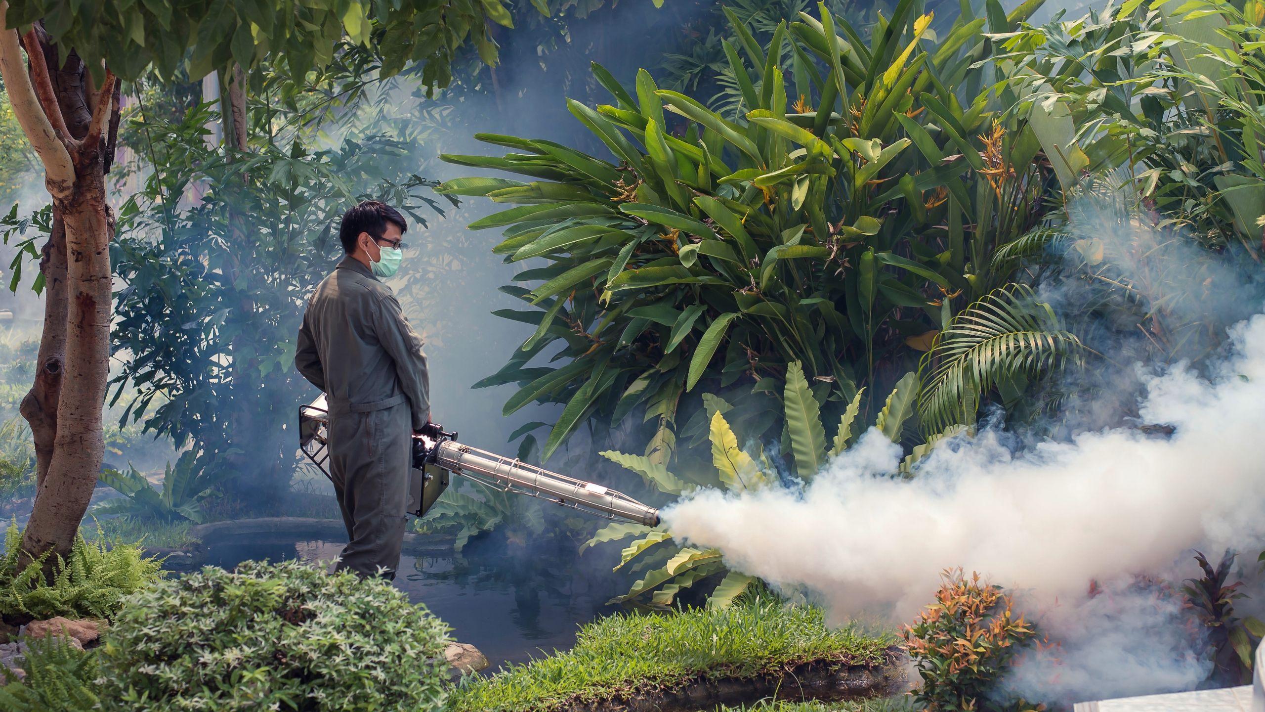 Chemical Mosquito Control Fogging