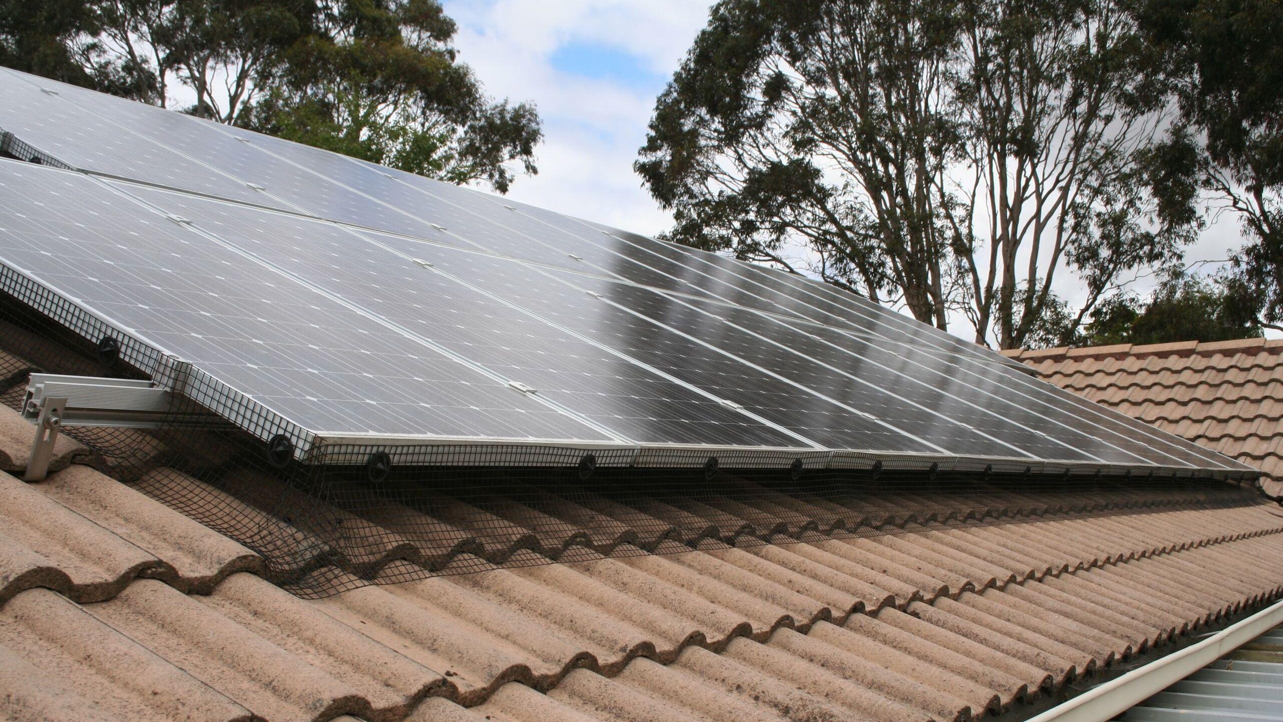 Solar Panel Bird Mesh Installed