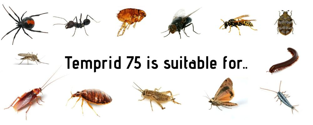 Temprid 75 pests controlled